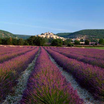 Faire une halte en Provence
