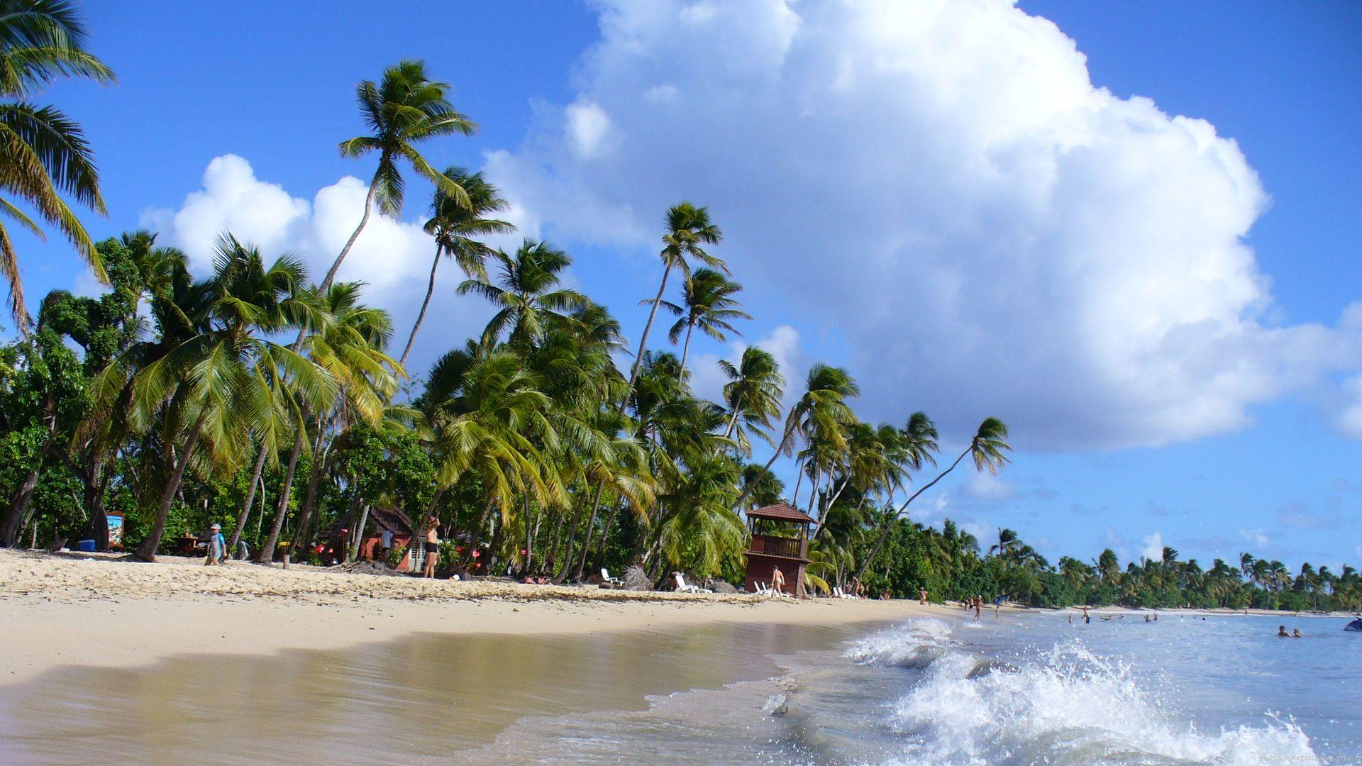 Martinique : partez à la découverte de la ville de Marin