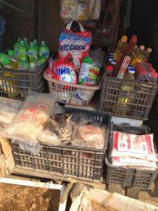 Cambodge : épicerie locale