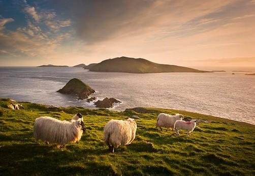 Les meilleures périodes pour découvrir l'Irlande