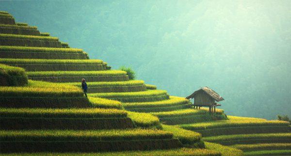 Meilleure saison pour Bali : quand partir?