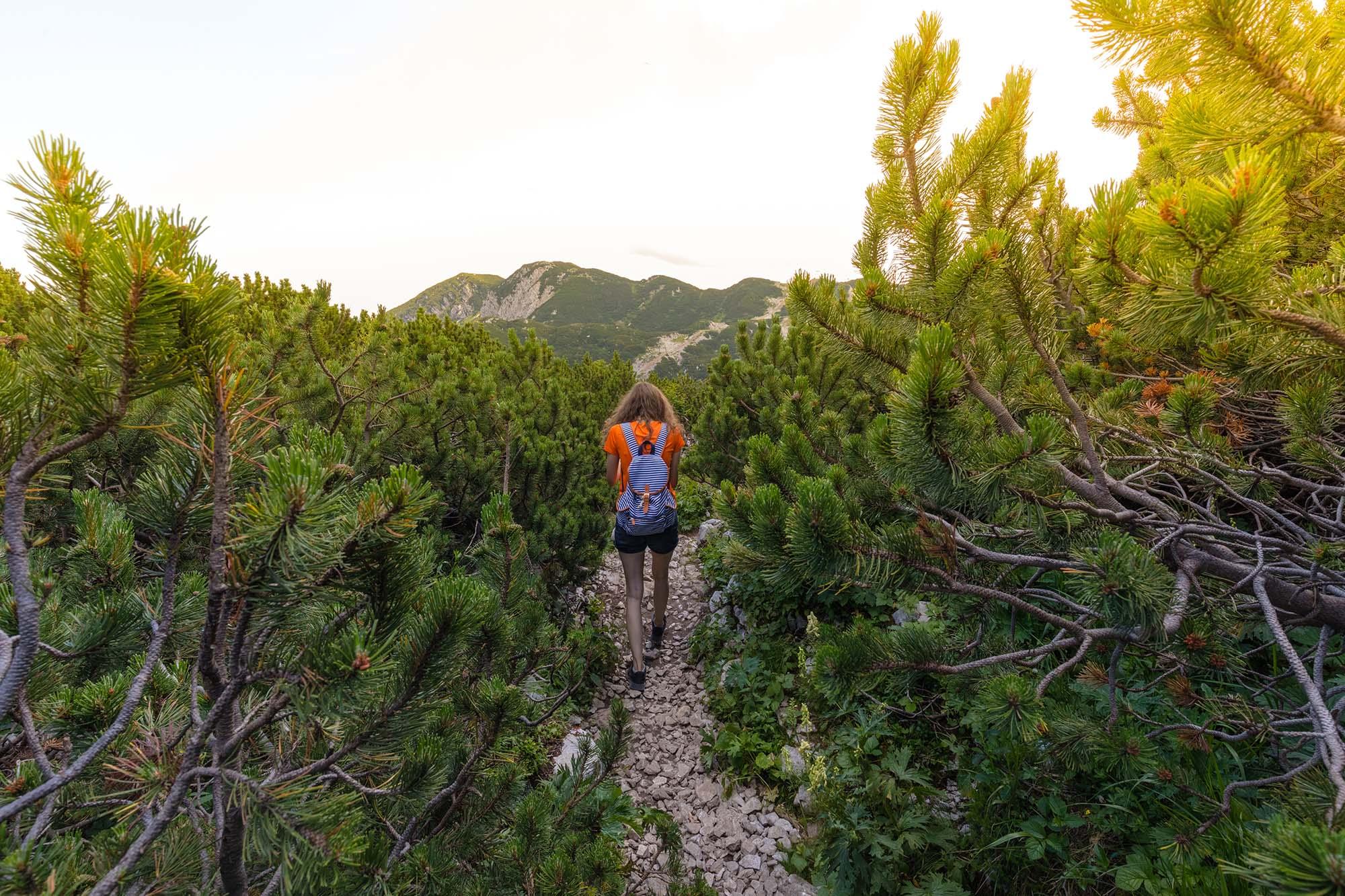 Une fille qui se promène dans le parc national du Tirglav