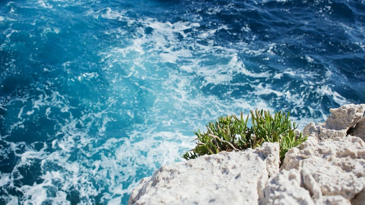 sentier du littoral à Nice