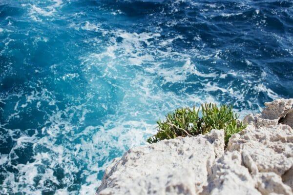 Coup de coeur : le sentier du littoral à Nice